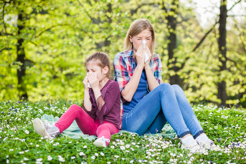 Clear Up Grass Pollen Allergies with Prescription Coverage
