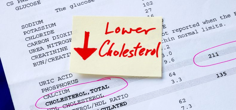 Prevent Heart Issues by Learning More About Cholesterol